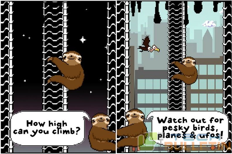 Slippy Sloth