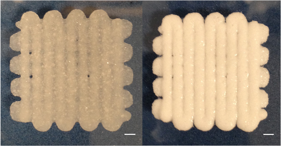 3d-printed_biomaterial_structure